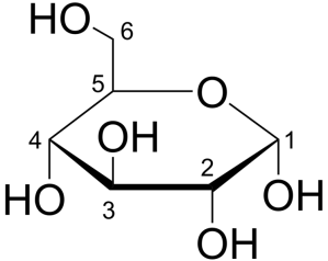 Gambaran proyeksi Haworth struktur glukosa (α-D-glukopiranosa)