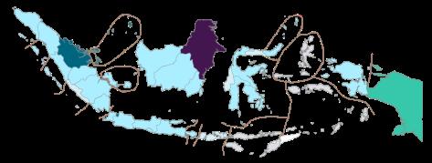800px-PDRB_per_kapita_Indonesia_2008.svg