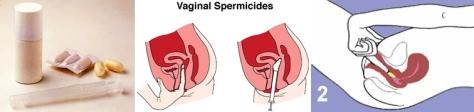 Spermisida1-horz