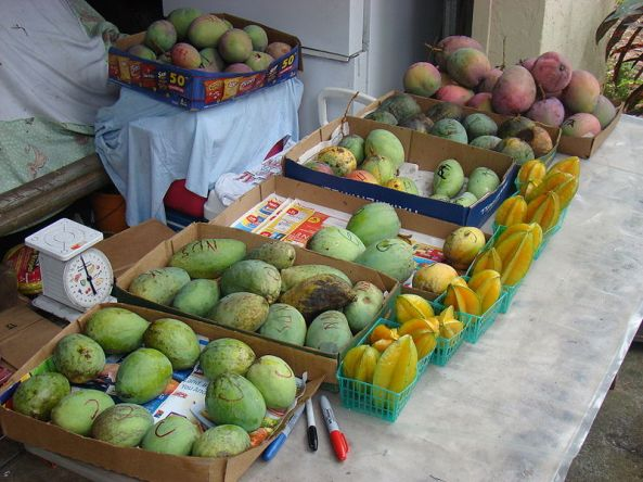 A mango stand in Merritt Island, Florida