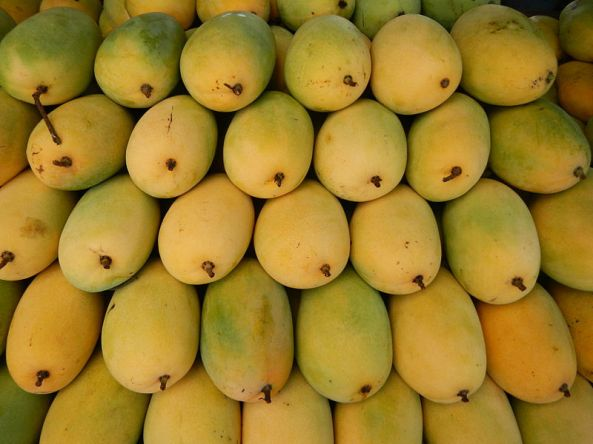 Ripe mangoes being sold in a market in the Philippines