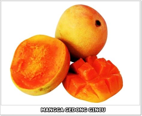 Mangga Gedong Gincu-4-01