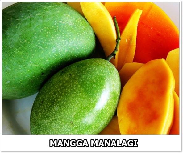 Mangga Manalagi-01