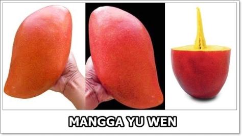 Mangga Yu Wen-2-horz-01
