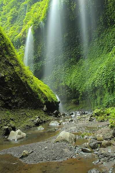 Madakaripura Waterfall - a good example of the lush nature of the park at lower elevations