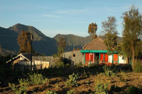 CemoroLawang_Farmhouse