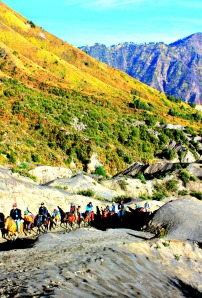 The Climb up Mount Bromo. Horses are for the Unfit!
