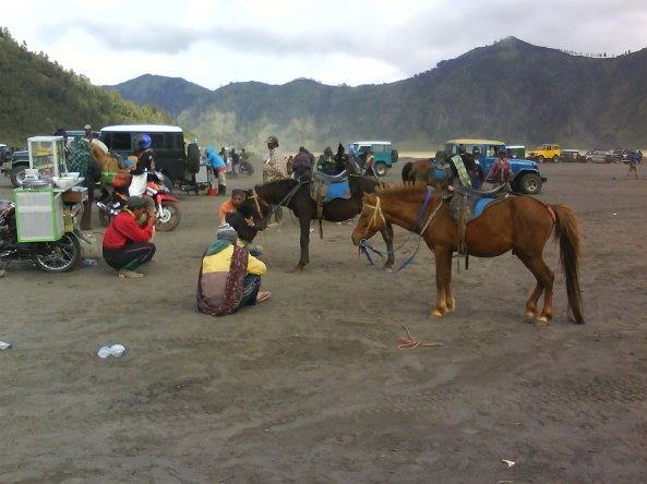 Mt Bromo horses with their guides and the jeeps