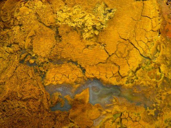 Brecciated yellow jasper, cut and oiled