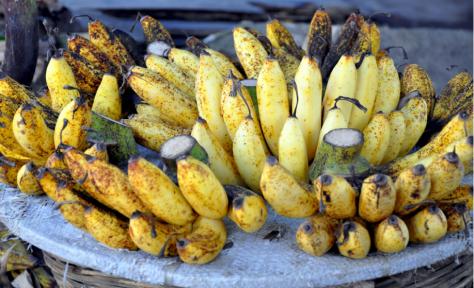 pisang raja sereh.png