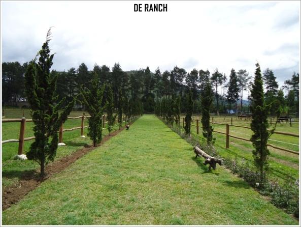 De-Ranch