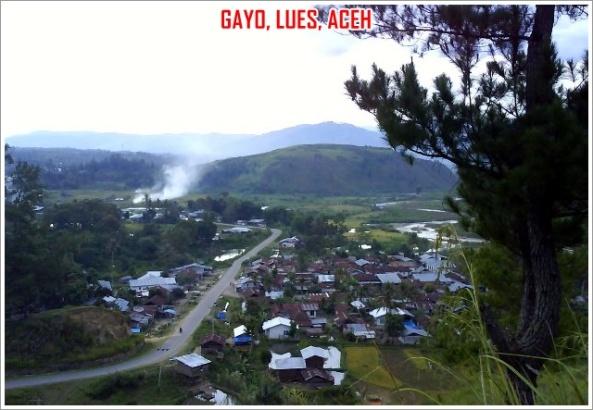 Gayo-Lues