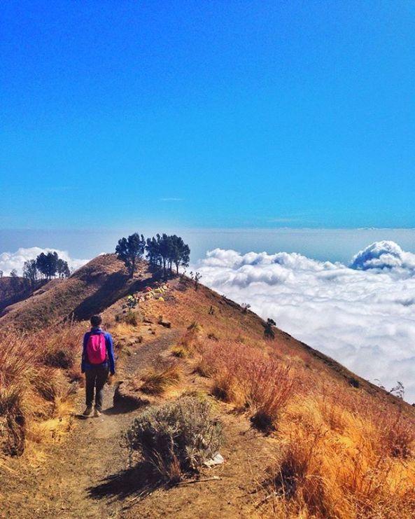 6 Gunung di Indonesi