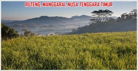 Ruteng-Pemandangan