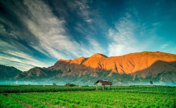 Desa-Sembalun-Lawang-ketinggian-1200-meter-dpl-600x369