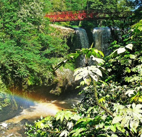 suguhan-alam-yang-indah-dan-menyegarkan-di-taman-wisata-alam-maribaya-bandung-600x577