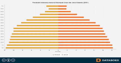 usia-produktif-dominasi-penduduk-indonesia-2016