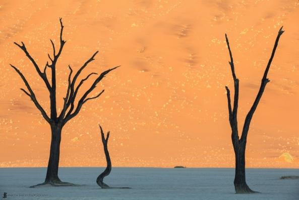 desert-in-namibia