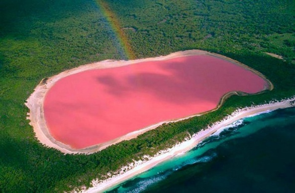 the-pink-coloured-lake-hillier-australia