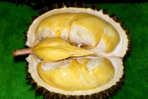 durian-matahari
