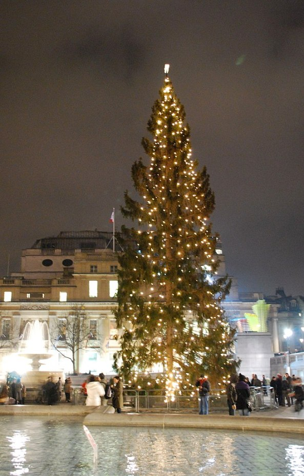 655px-Trafalgar_Square_Christmas_tree8