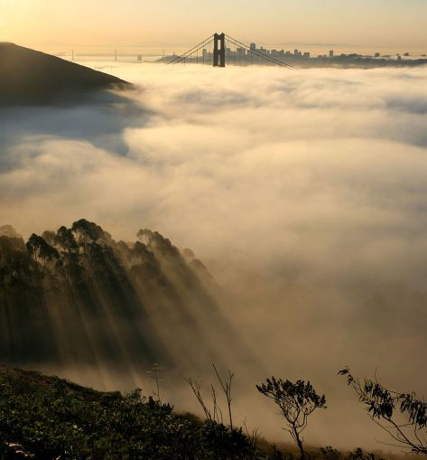 953px-San_francisco_in_fog_with_rays