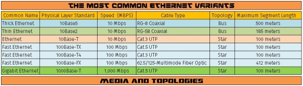 The most common Ethernet variants
