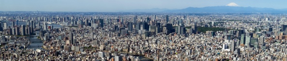 Tokyo_from_the_top_of_the_SkyTree_(cropped) (1)