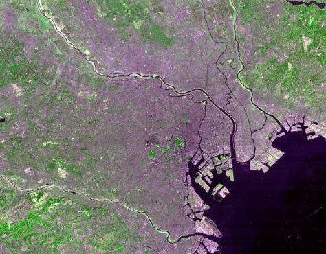 Tokyo_Landsat