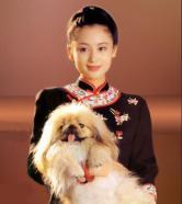 11-chen-hong
