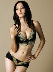 2010-newest-design-super-star-gong-beibi-lays-eva-magic-bra-bustier-bra-massage-bra-250x250