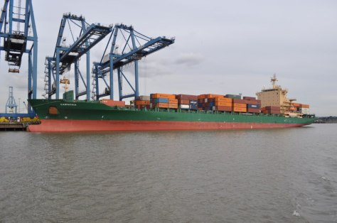 Carpathia_Unloading_at_Tilbury_docks_-_geograph.org.uk_-_2091919
