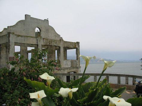 1024px-Alcatraz_Island_Flowers