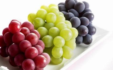 manfaat-kesehatan-dari-buah-anggur