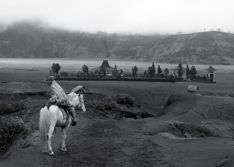 Pony,_Mount_Bromo_(Gunung_Bromo)_Indonesia,_East_Java