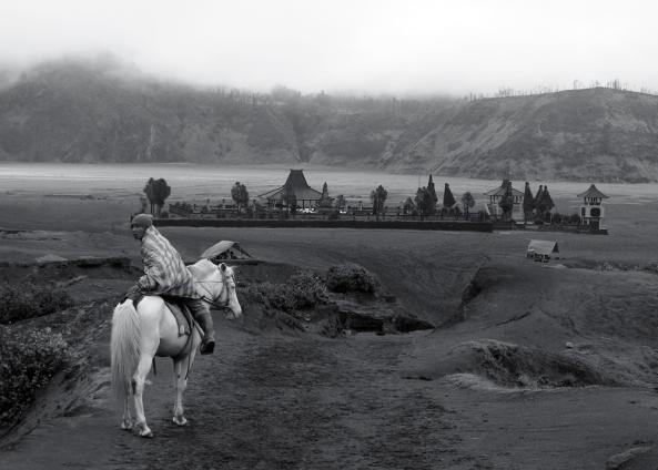 Pony,_Mount_Bromo_(Gunung_Bromo)_Indonesia,_East_Java