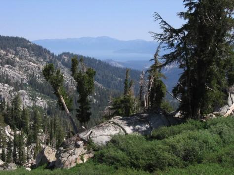 Tahoe_Rim_Trail_SL