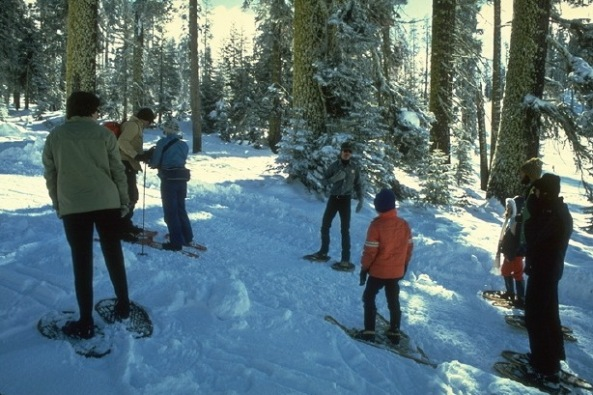 Yosemite_Winter_Hiking