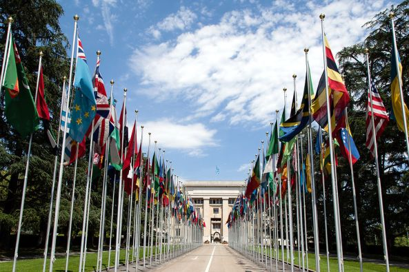 1024px-United_Nations_Flags_-_cropped