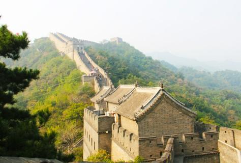 zhengguantai-500