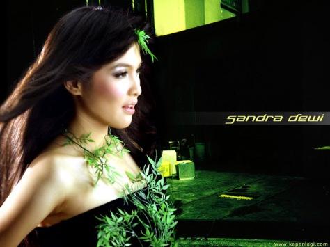 Biodata dan Profil Artis Sandra Dewi (2)