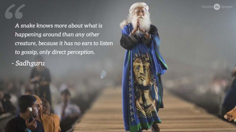 Great-Quotes-by-Sadhguru