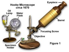 hookemicro