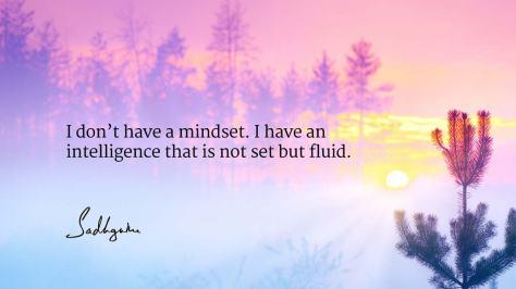 mind-37