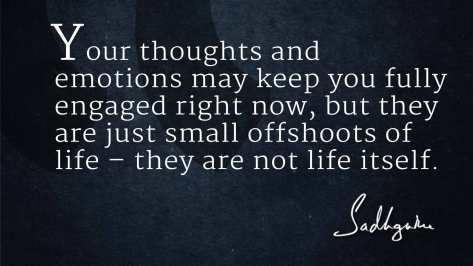 quotes-on-life-from-sadhguru-3
