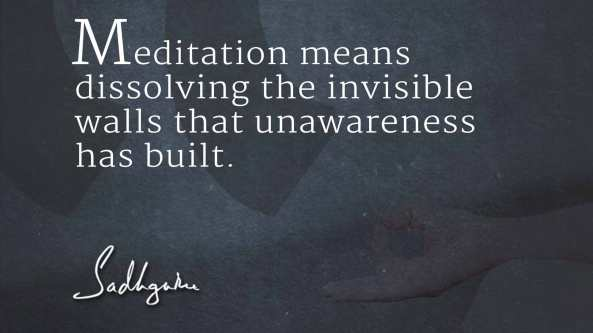 sadhguru-quote-on-meditation-3