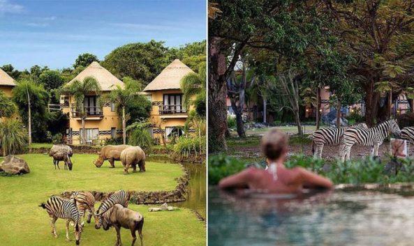 2-a-mara-safari-lodge-via-lisacowcher-740x441
