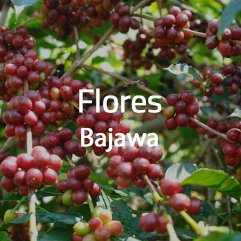 Kopi Flores Bajawa 1