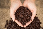 Kopi Sumatera-coffee-beans-and-womans-hands