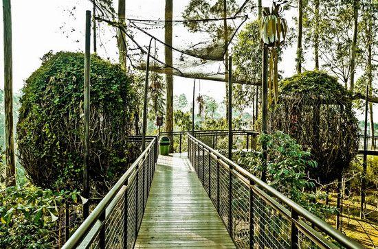 lutung-kasarung-dusun-bambu-lembang-bandung-1